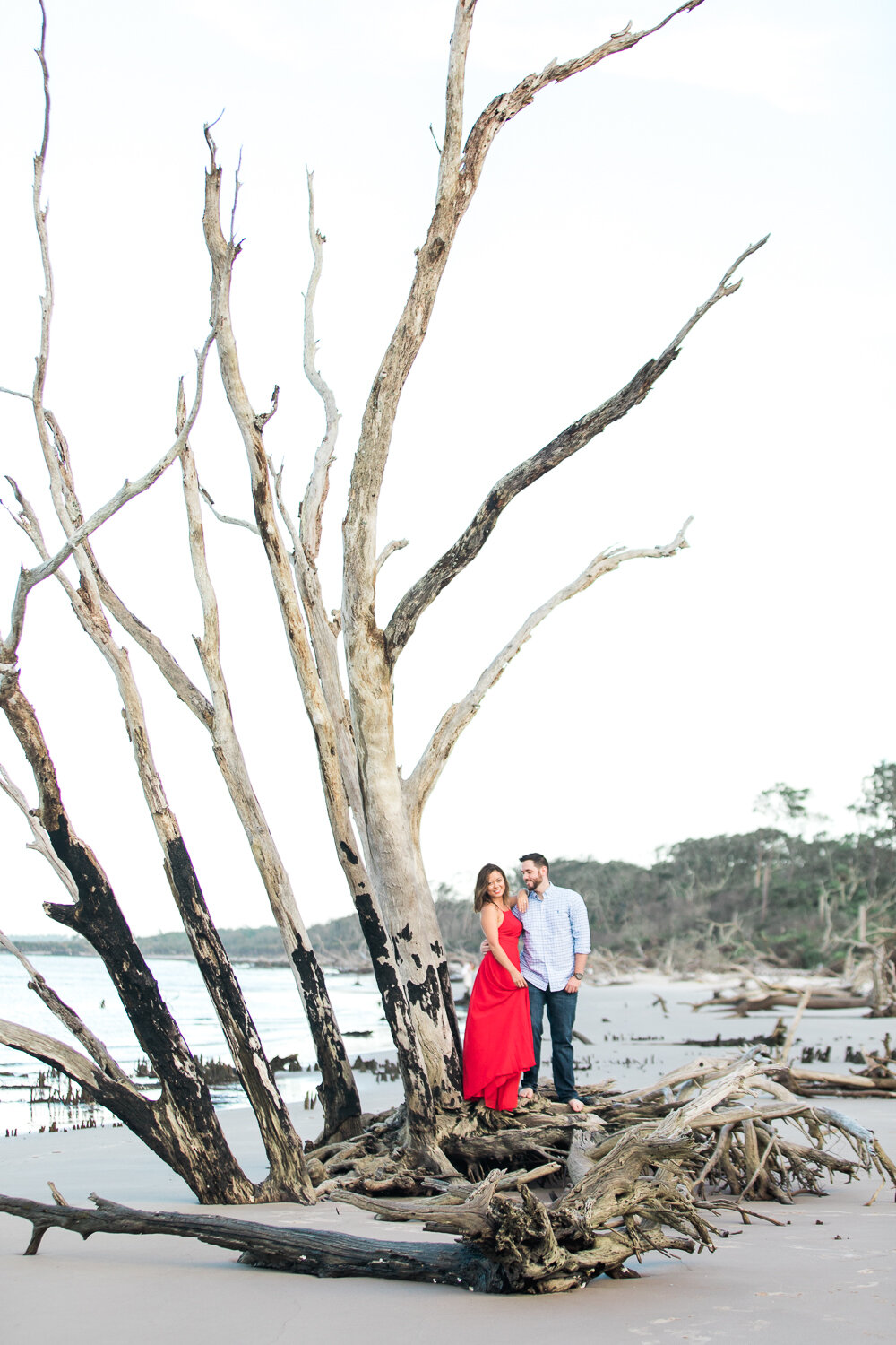 engagement session in Big Talbot Island driftwood beach