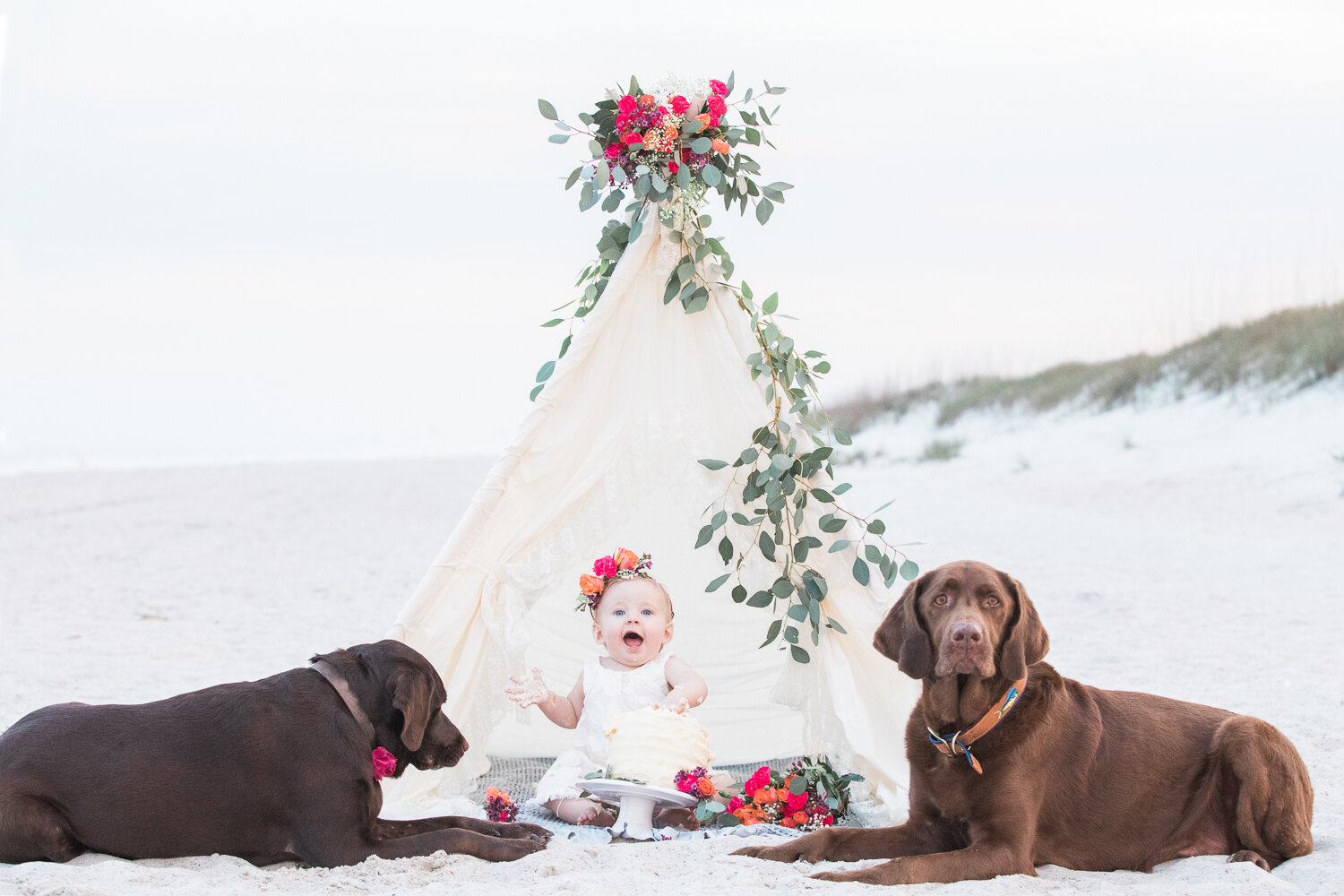 first birthday cake smash photoshoot with teepee and dogs