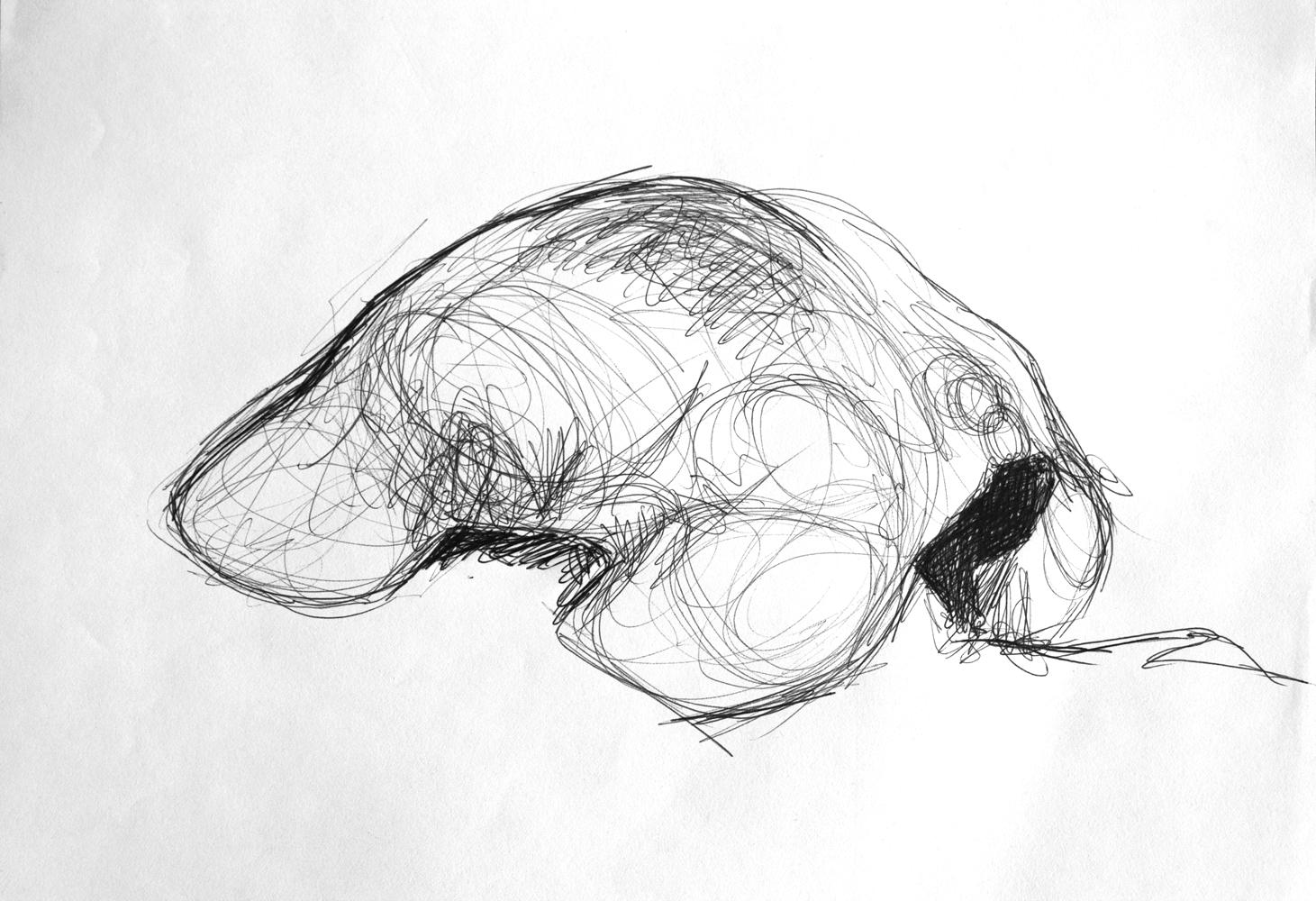 hunched-back-sketch-1.jpg