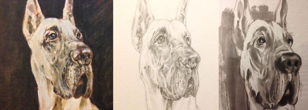 Dog (Watercolour & Pencil)