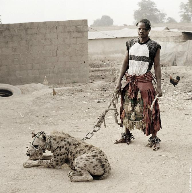 Hyena 1.jpeg
