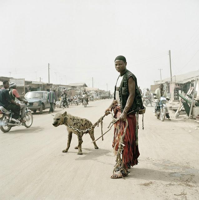 Hyena 5.jpg