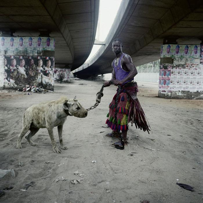 Hyena 8.jpg