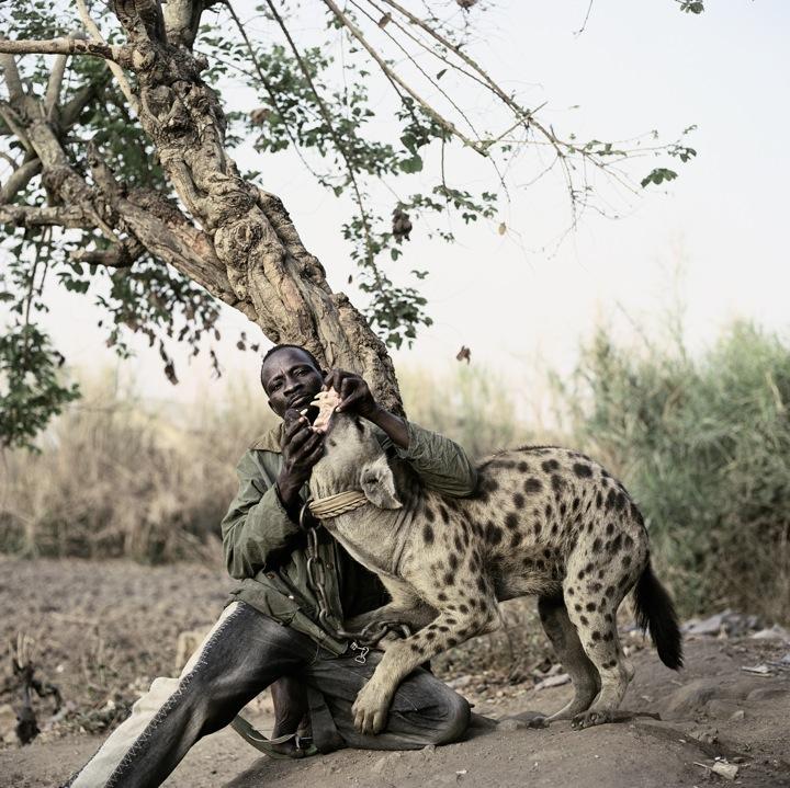 Hyena 9.jpg