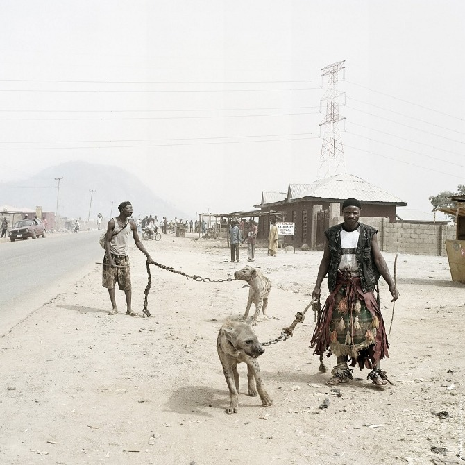 Hyena 11.jpg