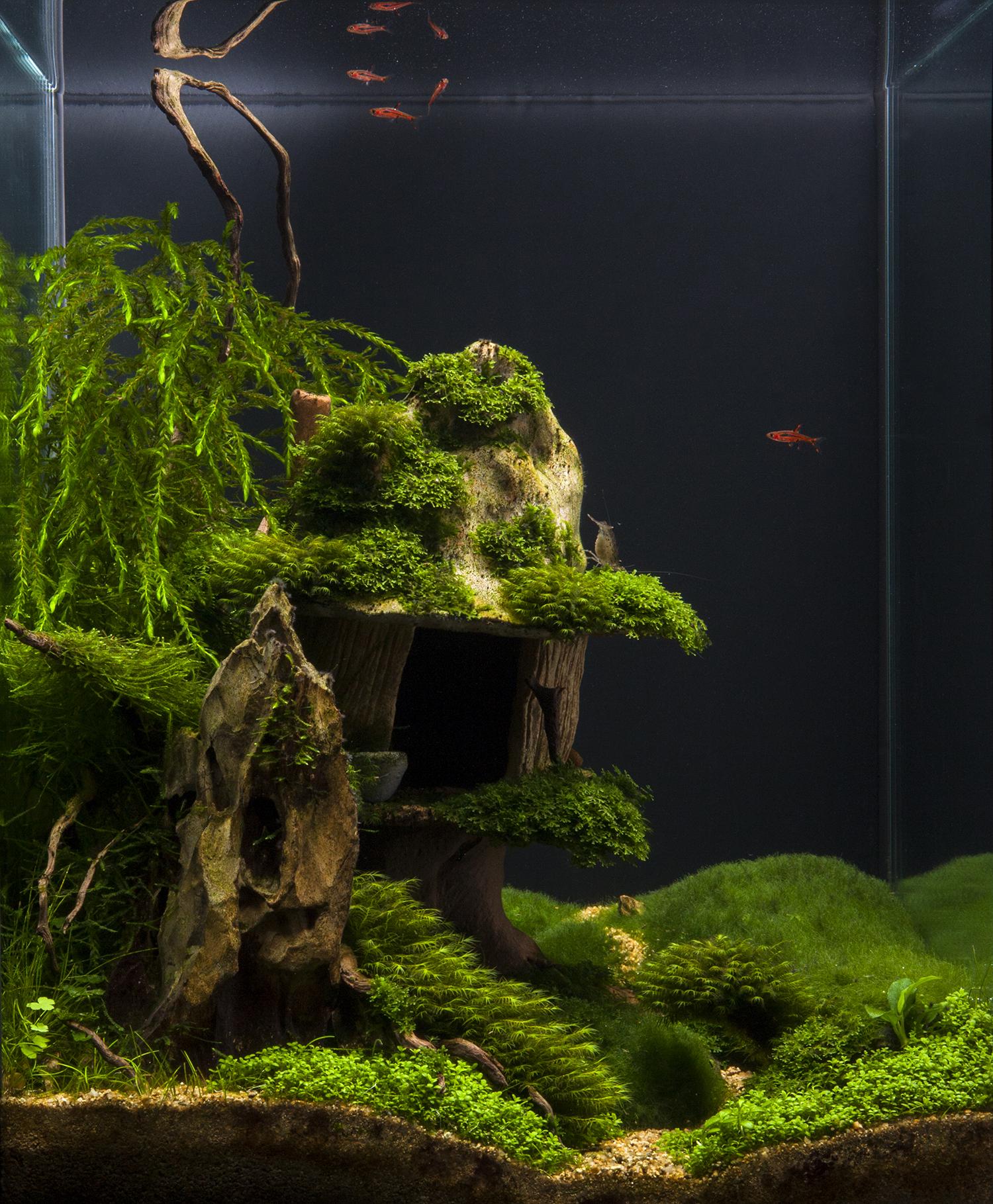 """11 miejsce 2011 AGA Contest Praca pod tytułem: """"Chatka Czarownicy""""."""
