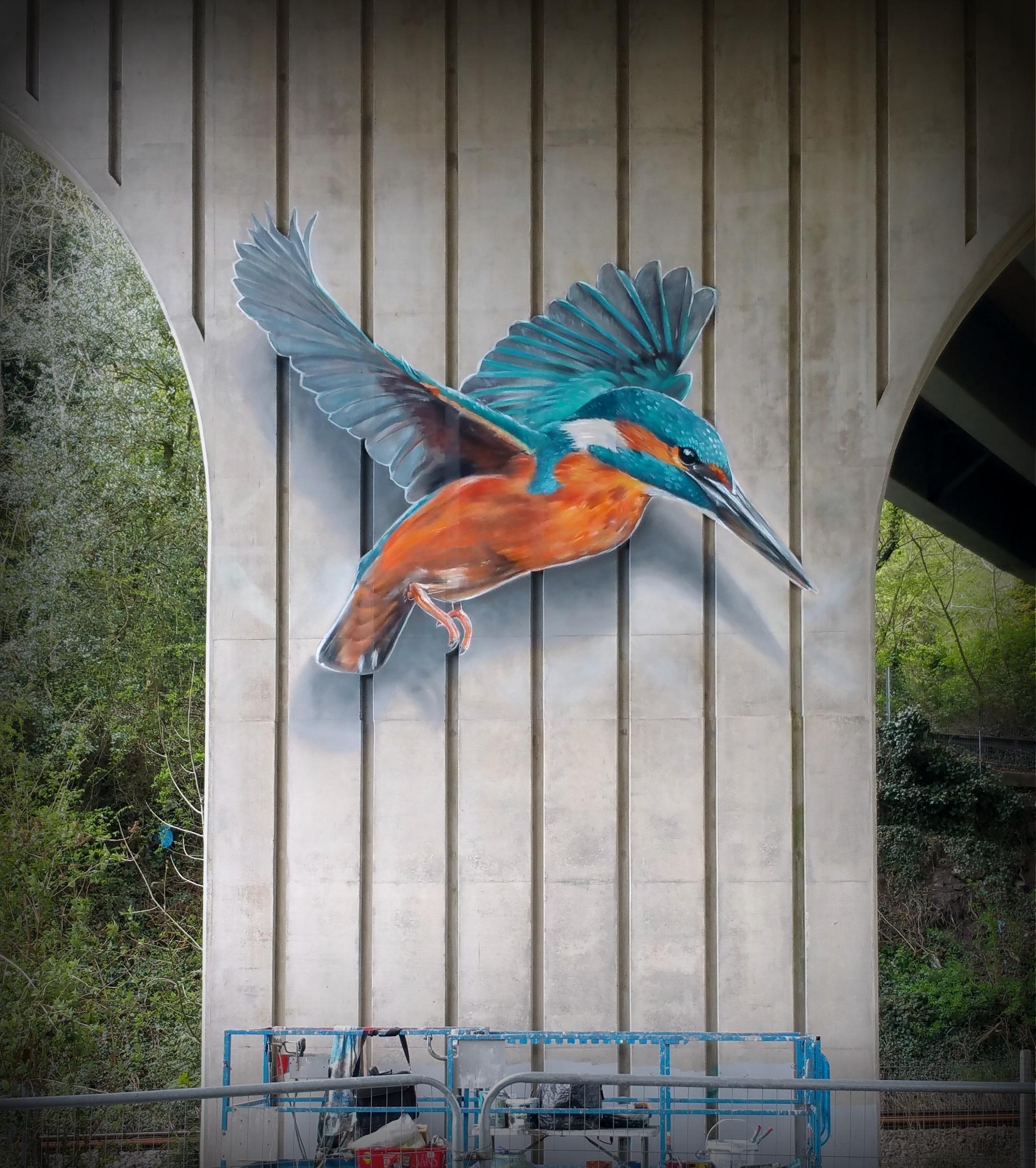 AoR-Kingfisher.jpg