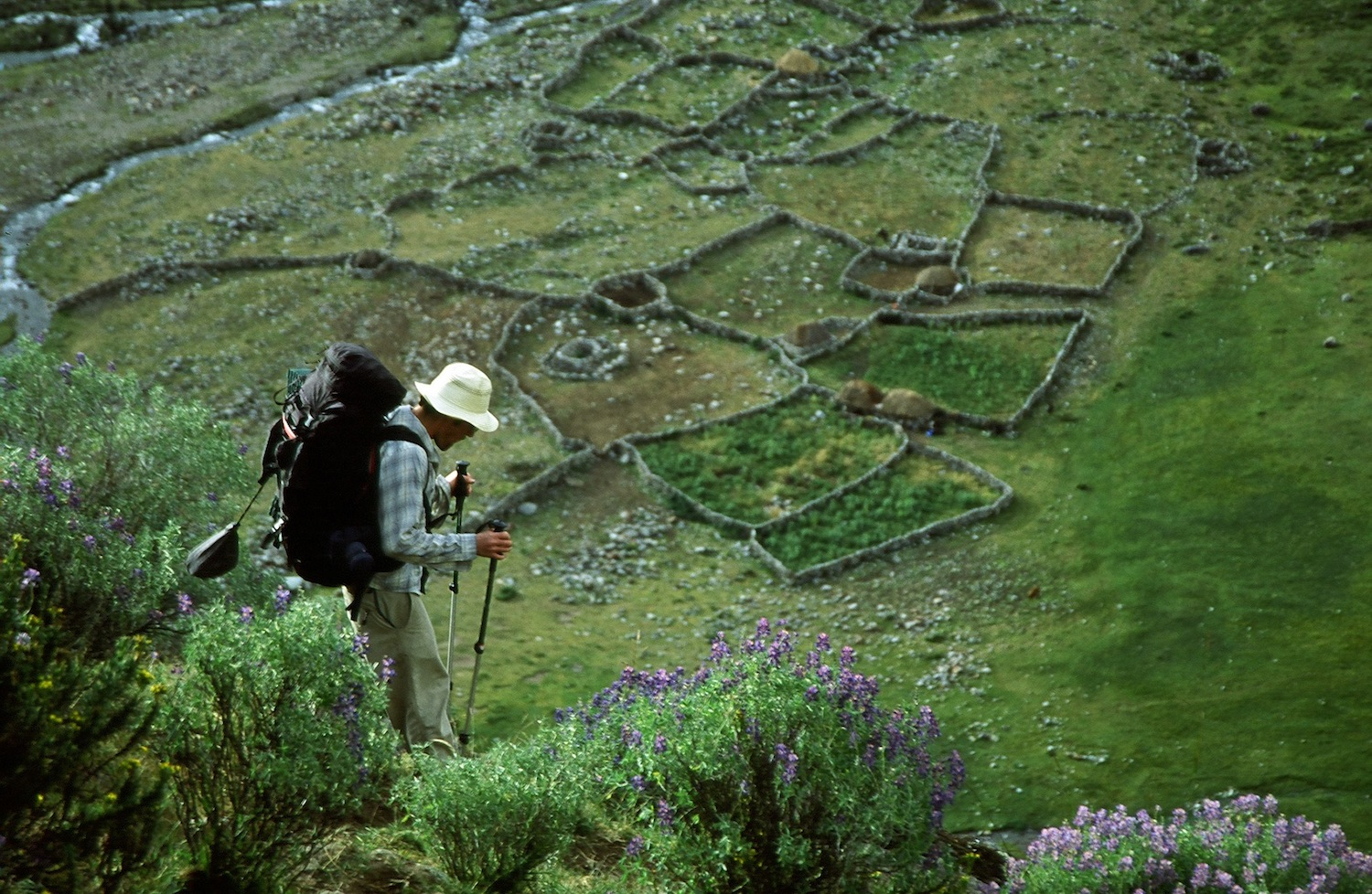 Conservation, ecotourism, and agropastoralism share common ground in the Andes. ©Ben Ditto