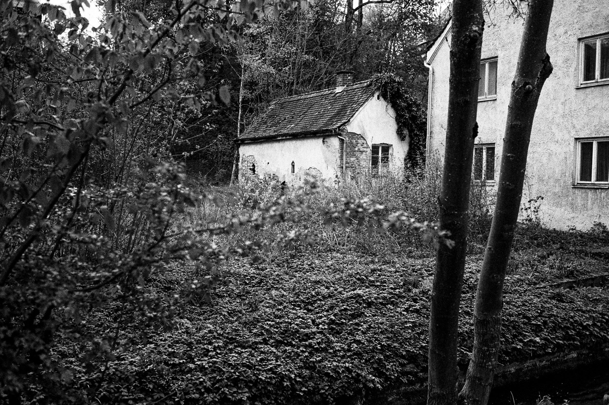 home-9.jpg