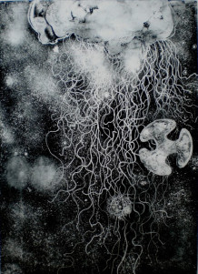 "Etching from ""Stabbing at Immortality: Building a Better Jellyfish"" (2013)"