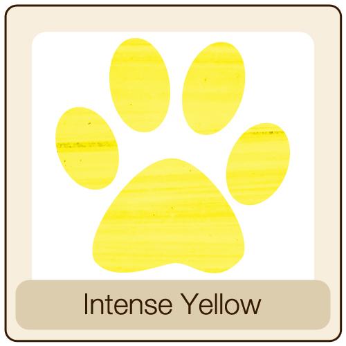 Intense-Yellow.jpg