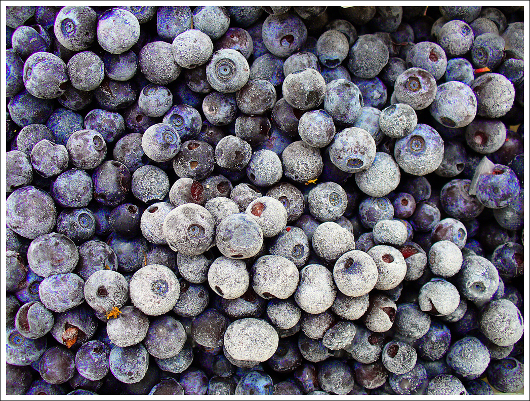 Aren't these gorgeous frozen blueberries?