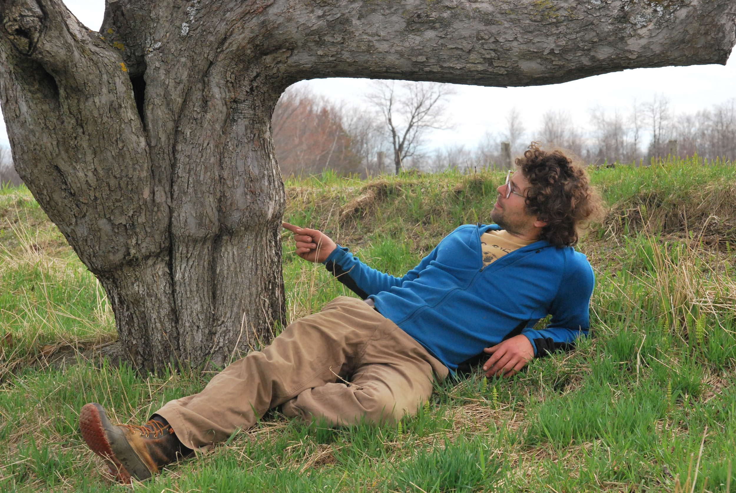 Angus pointing out a still-visible graft union on an old tree.