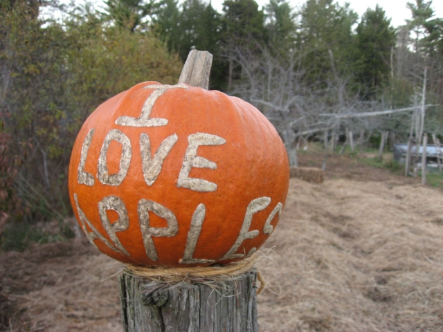 "Nothing says ""I love apples"" quite like a custom-inscribed pumpkin! Pumpkin courtesy of Seth Yentes at North Branch Farm."