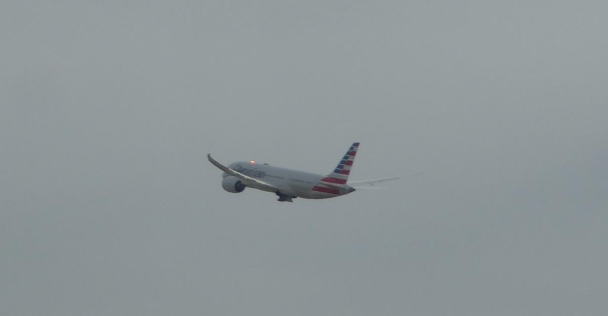 AA1503 Plane AA787.jpg