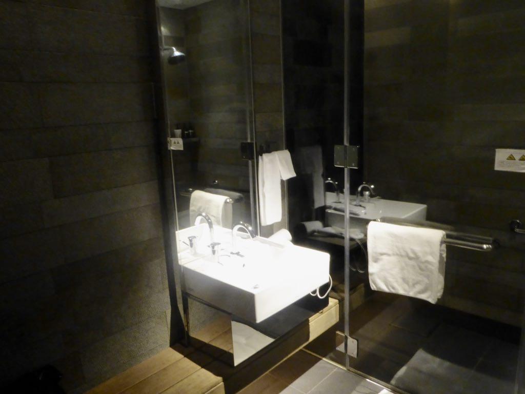 JL735 Lounge Shower 2.jpg