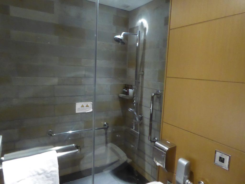 JL735 Lounge Shower 3.jpg