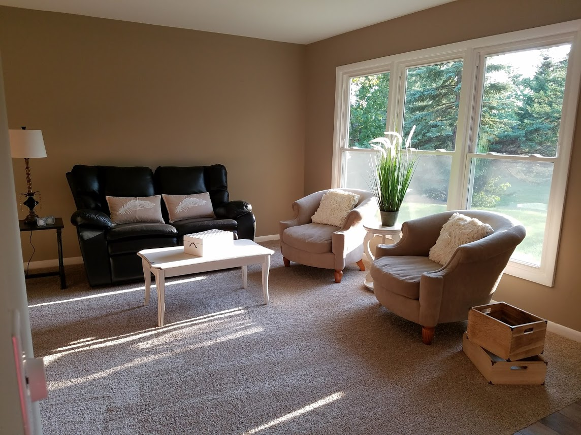 Living Room Remodeling Project / Bolingbrook