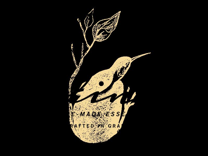 Polinae