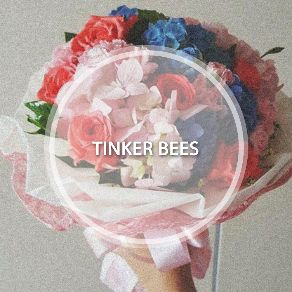 COVER_tinkerbees.jpg