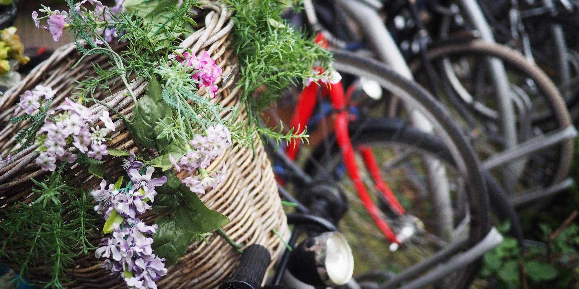 bikes2.jpg