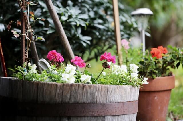 colorful pots.jpeg