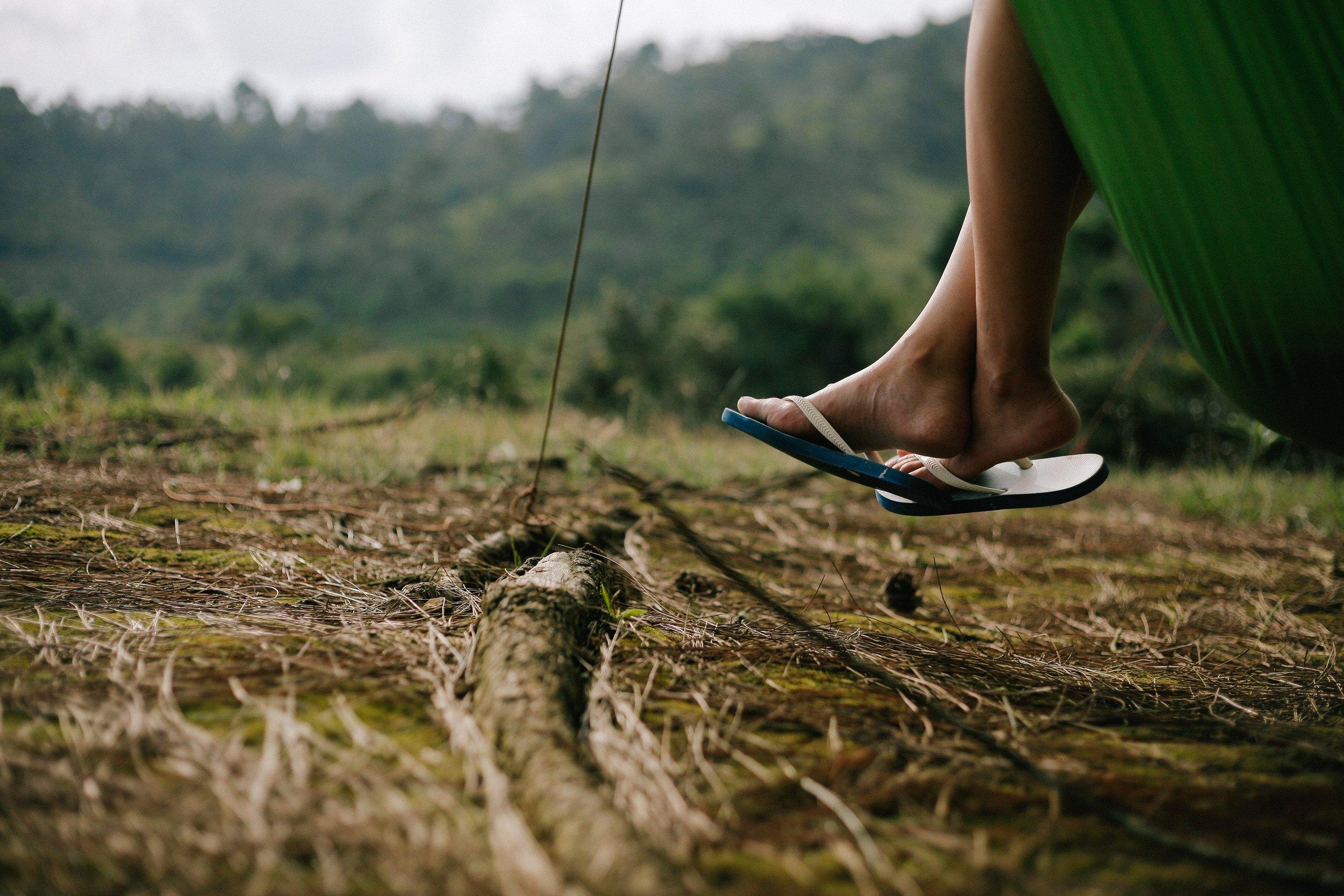 beautiful-field-flip-flops-1036403.jpg
