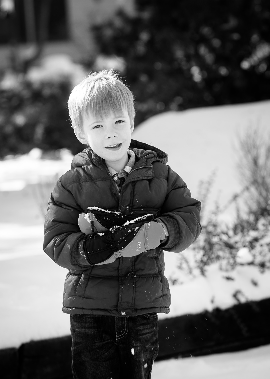 A young boy plays in the snow during his outdoor family Christmas photo session at The Gardens of Castle Rock