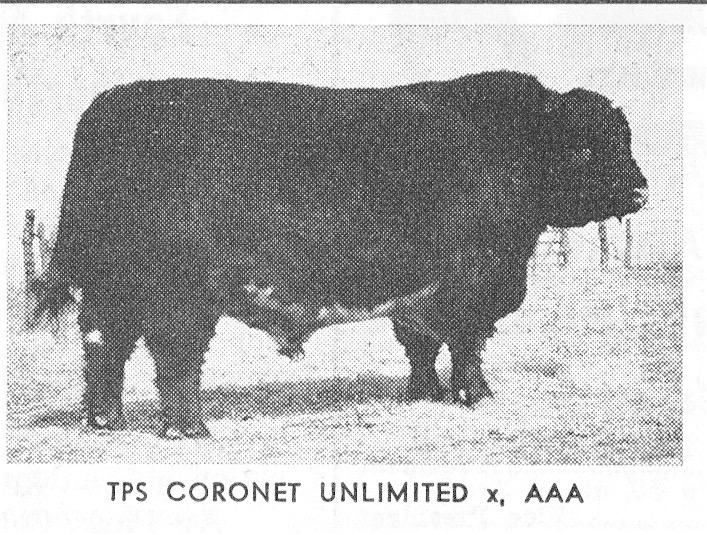 TPS Coronet Unlimited