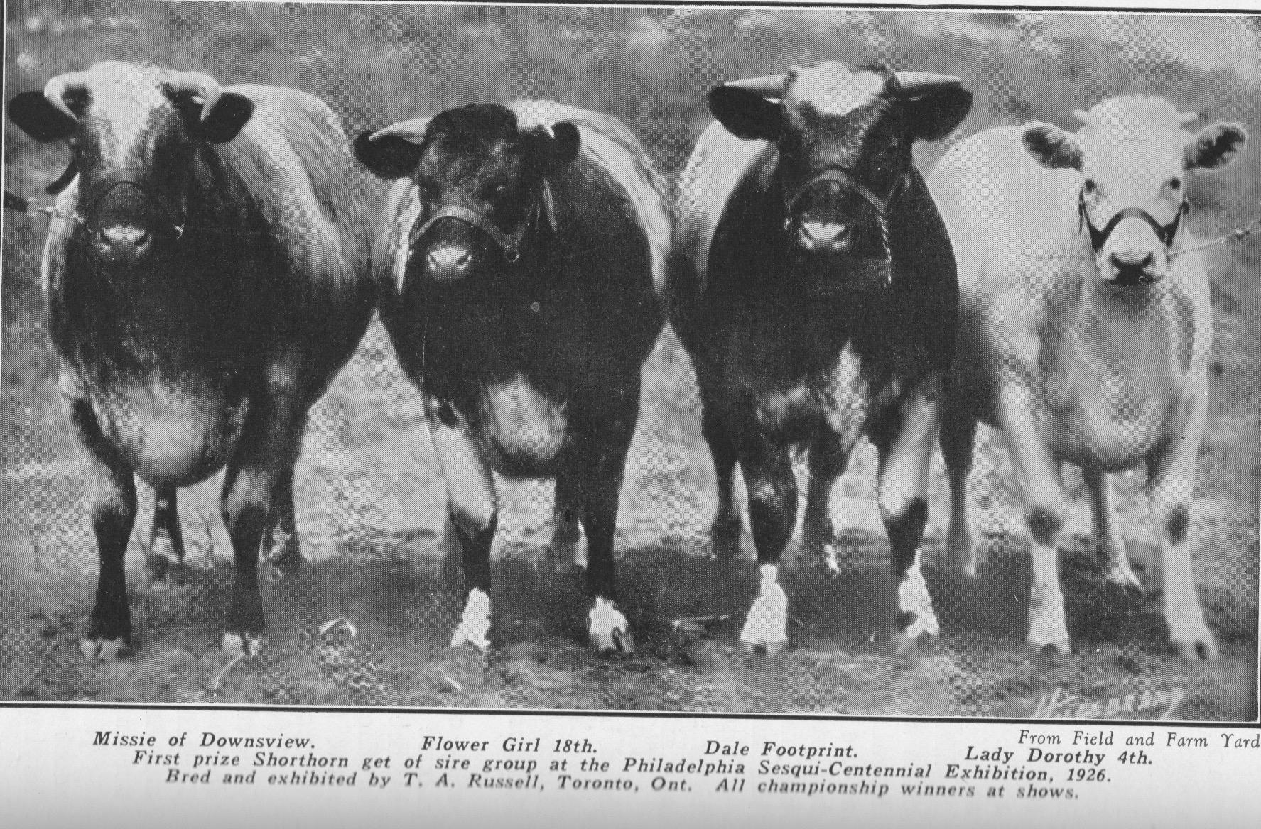 Philadelpia Exhibition, 1926