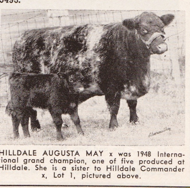 Hilldale Augusta May