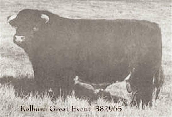 Kelburn Great Event
