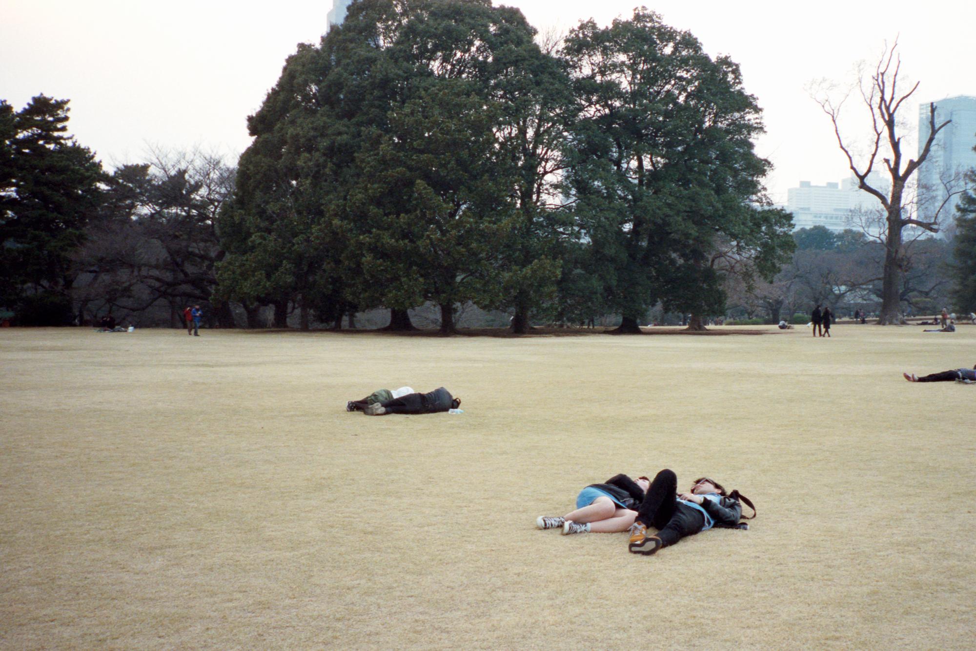 picnic1 (10).jpg