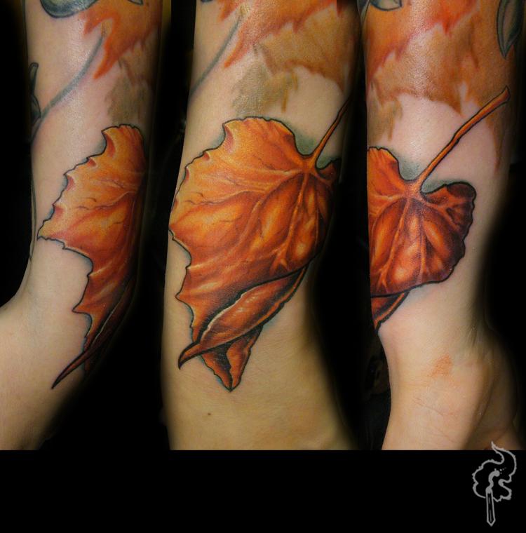 BR13_Leaf_Fall.jpg
