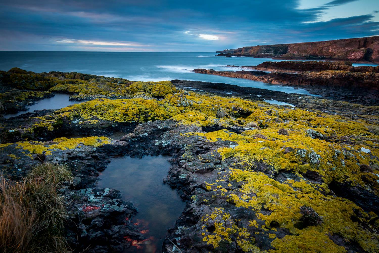 Lichen covered rocks, Crawton Coastline