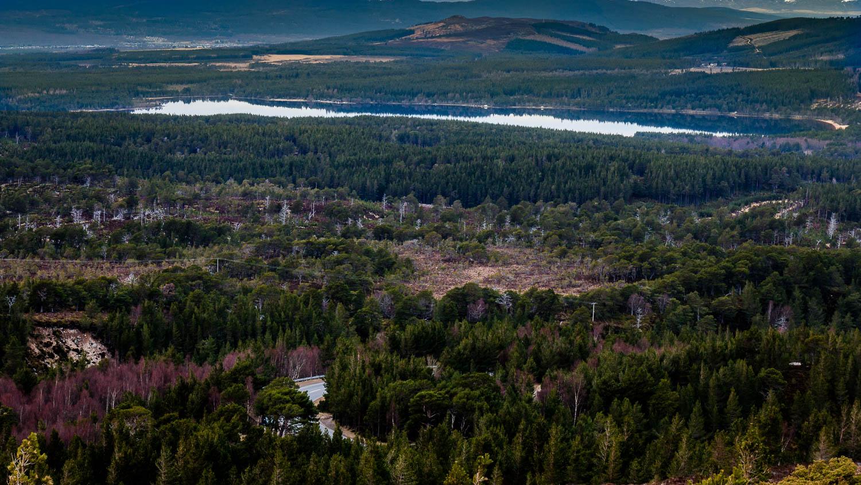 Loch Morlich and the Rothiemurchus Forest