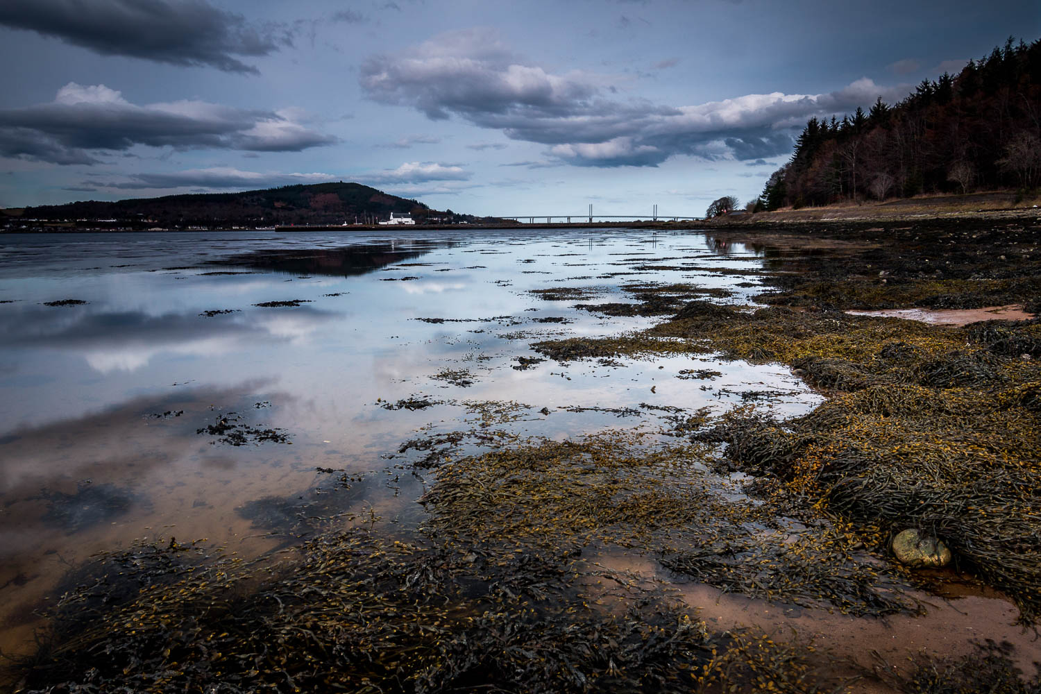 Looking to the Kessock Bridge from the shores of the Beauly Firth.