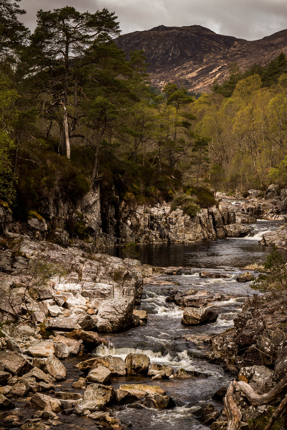 The rapids just upstream of Dog Falls on the River Affric.