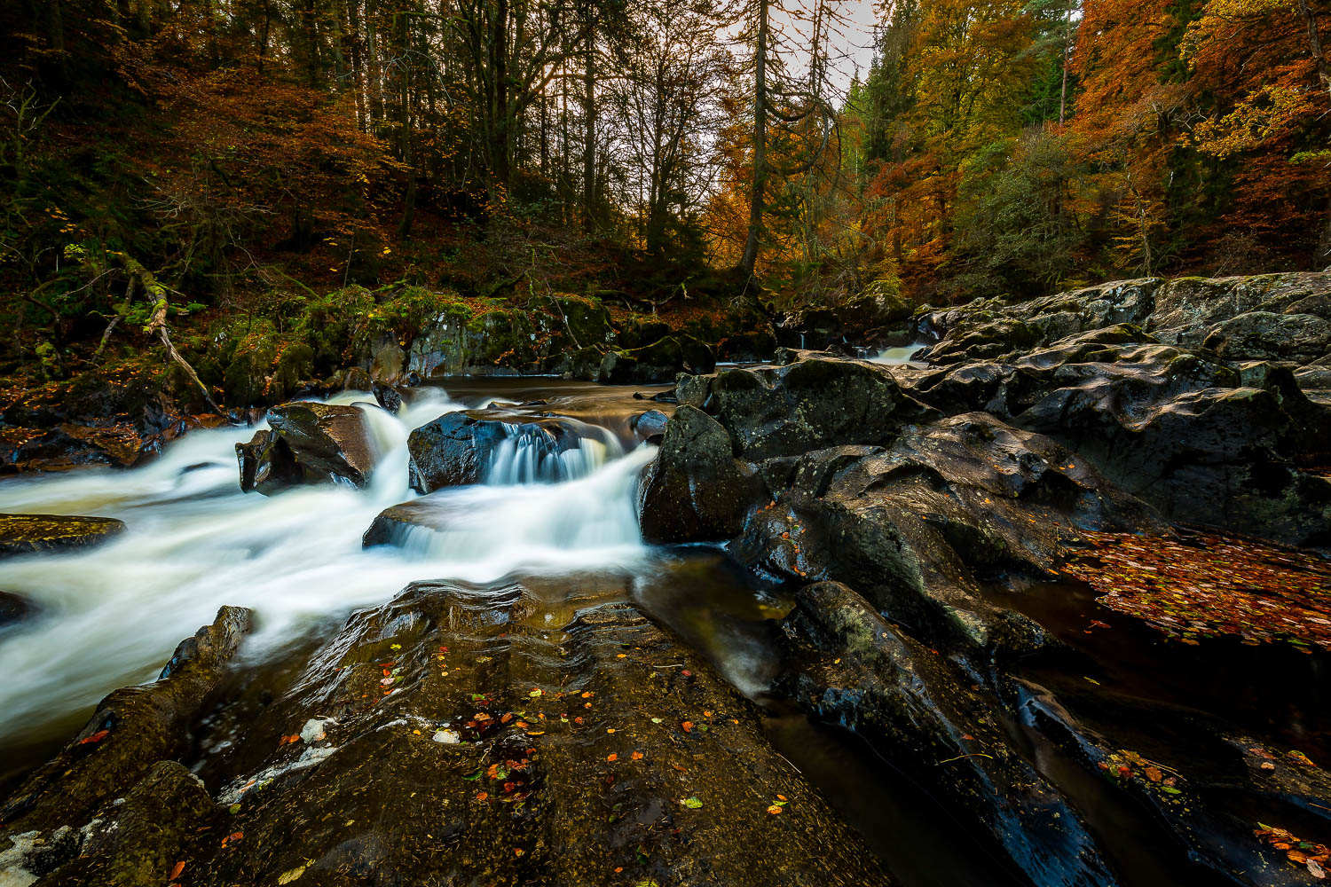 The River Braan, The Hermitage