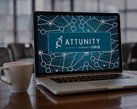 Attunity bug.jpg