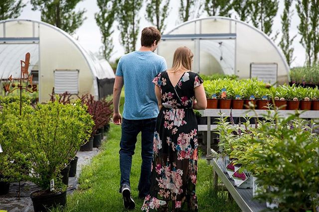 in case you were wondering, yes, i would wander about greenhouses with our couples forever and ever. 💚