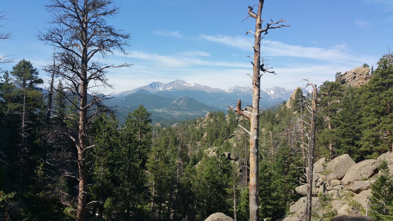 Mt. Scene.jpg