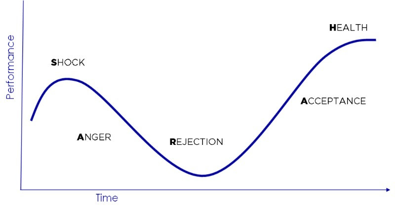 The SARAH change curve highlights the stages most people will go through while adapting to change: Shock, Anger, Rejection, Acceptance, and Health.