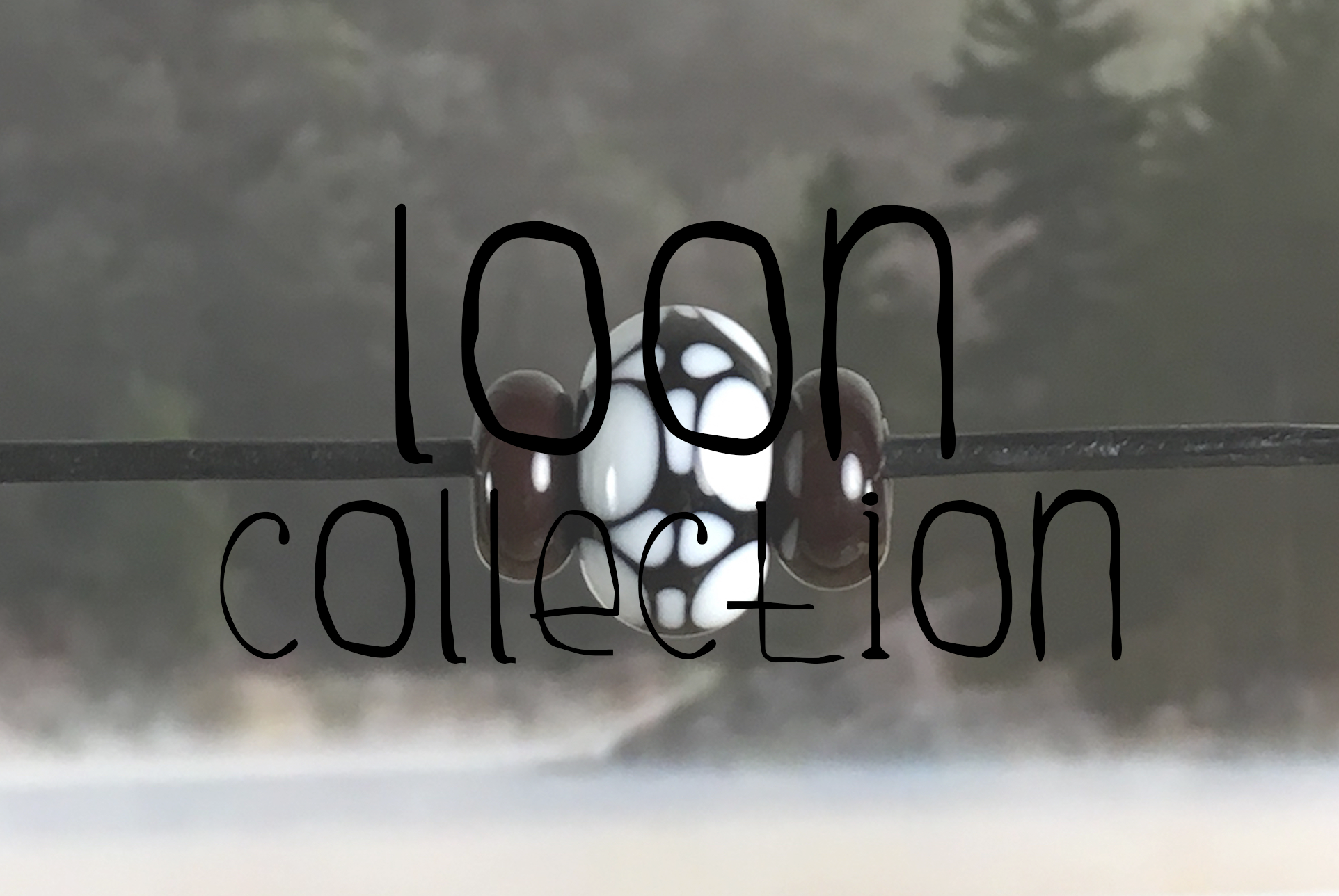 loon1.png