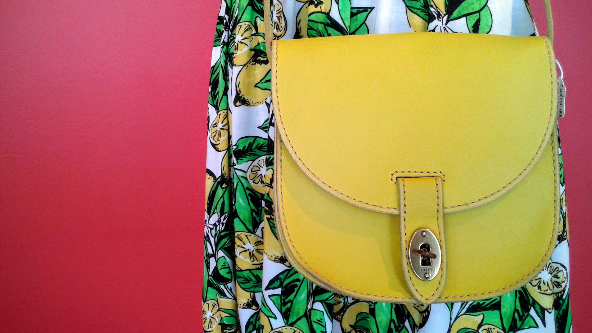 Yellow  Fossil  purse, $46