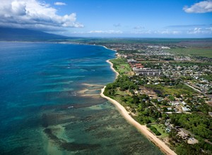 Search Maui Properties