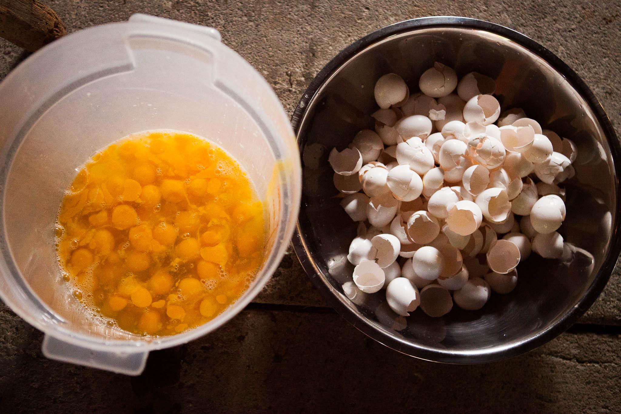 Lots-of-eggs-01.jpg