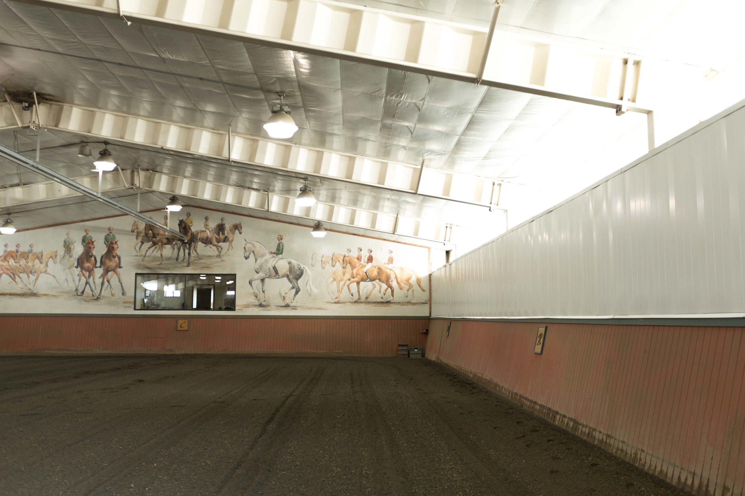 Colorado-Lifestyle-Photography-Jimena-Peck-Mind-Body-Horse-Yoga-Jessica-Greer-Dressage-Arena