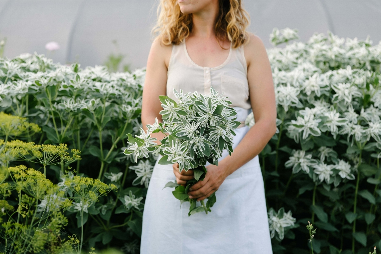 Jimena-Peck-Denver-Lifestyle-Editorial-Photographer-Native-Hill-Farm-Flowers-Hands-Bucket