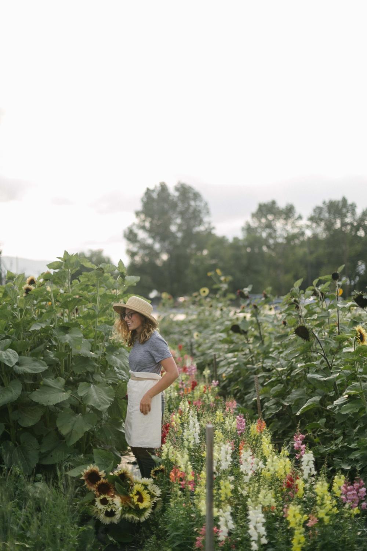Jimena-Peck-Denver-Lifestyle-Editorial-Photographer-Native-Hill-Farm-Flowers-Field-Sunflowers